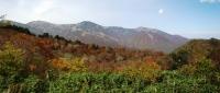 蓮華温泉から五輪山.jpg