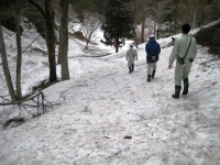 歩道.JPG