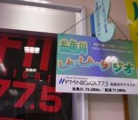 IMGP2781.JPG